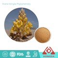 Factory supply Cistanche Tubulosa Extract 10:1 TLC