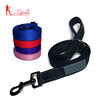 Best Selling Products 2 Layer Nylon Dog Leash 6 Foot 2.5mm Thick