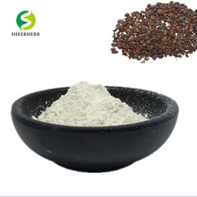 High quality ligustrum lucidum fruit extract powder nv zhen zi fen for eye and hair health