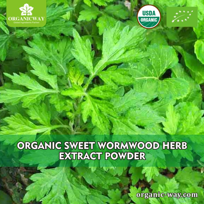 EU NOP organic sweet wormwood extract artemisinin cancer