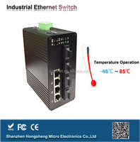 Industrial OEM 16 port Fast Ethernet poe switches support 24V passive POE or 48V POE, work with IP camera, Outdoor CPE