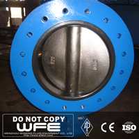 WFE WCB Carbon Steel Double Flanged Connection Hard Seal Worm Gear Drive Butterfly Valve