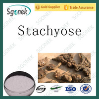 Factory supply Stachyose in stock