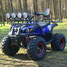 Zhejiang Performance ATV Chinese Electric ATV