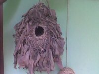 Bird Nest rush decoration