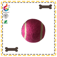 Pet grooming Customized foot printed dog chew ball