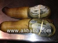Live geoduck exporting to China & Hong Kong