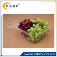 ECO-friendly cheap fresh fruits and vegetables buyers for sale