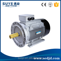 Y2 Series Three Phase Induction Motor Asynchronous Electric Fan Motor 0.18KW 1000RMP