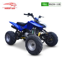 BS250-11B bashan atv 250cc quad bike with EEC