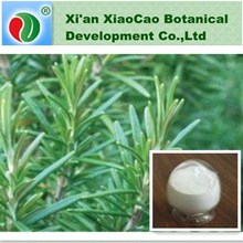 Water Soluble Saw Palmetto Extract Fatty Acid, Saw Palmetto Berry Extract