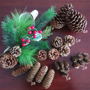 Natural pinecones for Christmas ornaments shooting props dried flowers