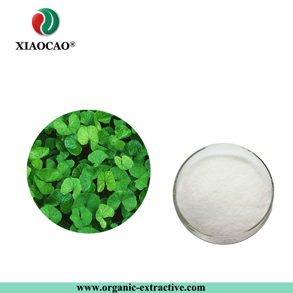 100% Natural Raw Material Centella asiatica Leaf/ Hydrocotyle asiatica Extract