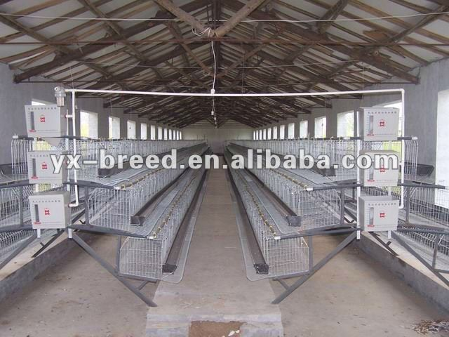 poultry equipment layer cages