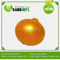 High Quality Chinese Fresh Yellow Onion