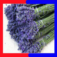 hot sale high quality dried lavender flowers