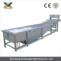 Factory supply multifunctional electrical vegetable&fruit washer&air bubble washing type