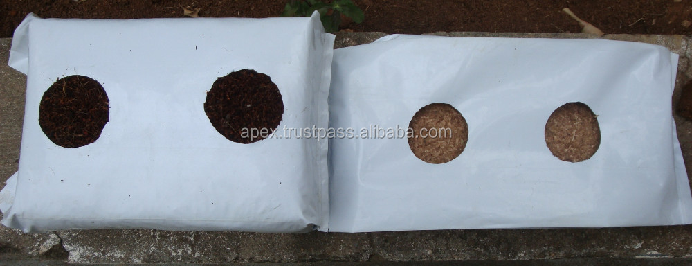 south indian coir pith growbags