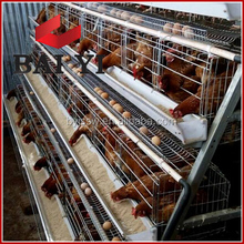 Different Types Of Poultry House/Poultry Farm House Design