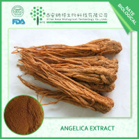 2017 hot sale product Angelica Dong Quai Extract 1% Archangelica Root Extract for health care