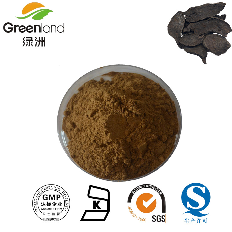 High quality He Shou Wu extract/Tuber Fleeceflower Root Extract/Fo-ti Extract for hair health, he shou wu extract powder
