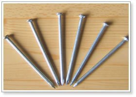 common steel nails for fence (wholesale price)