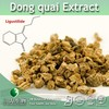 Pure Natural Dong quai Extract | Dong quai Powder Extract | Ligustilide 1% from 3W GMP factory