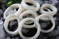 Frozen squid rings seafood with DIPOA