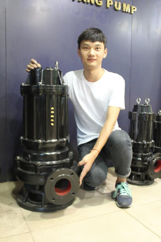 220 volt submersible lisier puisard pompe puisard pompes sous sol pompe id de produit. Black Bedroom Furniture Sets. Home Design Ideas
