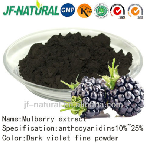 100% natural Mulberry fruit extract purple black powder
