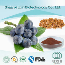GMP High quality Pygeum Africanum extract, Pygeum bark extract 2.5%-13% Phytosterol in bulk supply
