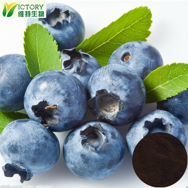 Factory supply 100% nature acai berry juice powder