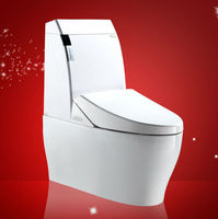 Bathroom Ceramic Electronic Sanitary Ware Siphonic One Piece Toilet