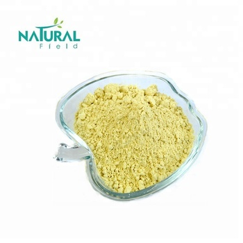 High Purity Lichen Usnea Extract Usnic Acid 98% for Health