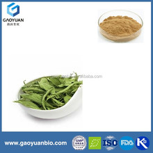 Free sample stevia p.e. powder with organic was supplied by xi'an gaoyuan factory