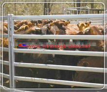 Anping Jincheng new designs for livestock metal fence panels