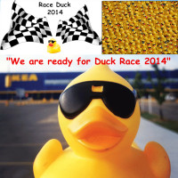 Floating weighted serial numbers rubber race duck