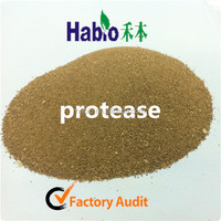 15 years best discount and quality of Habio acidic protease for feed industry ,