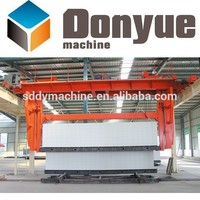 Dongyue 2015 autoclaved aerated concrete block price