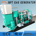 China CE approved quiet gas generator 40 kw price