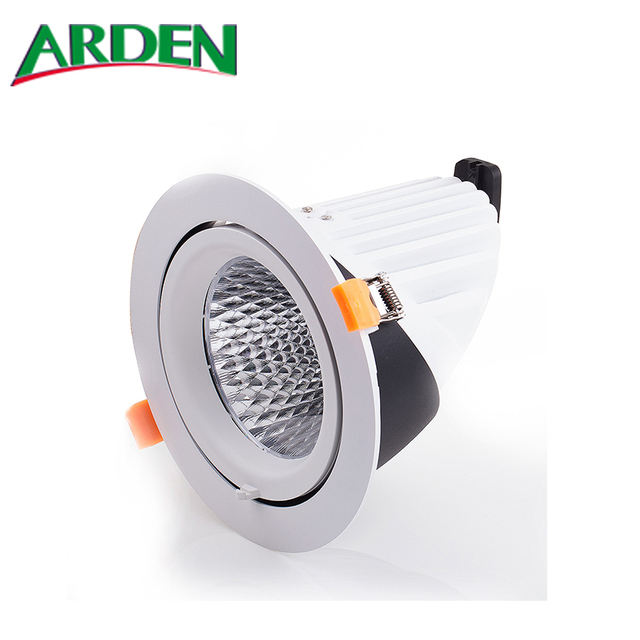 38W IP65 Adjustable COB Gimbal LED Downlight with Cutout 145mm