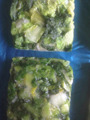 (BQF) FROZEN CHINESE CABBAGE