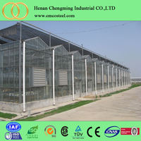 2016 New High Quality Greenhouse Farming