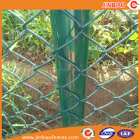 Factory Supply Hot Sale 9 Guage Plastic Green Coated Chain Link Fence