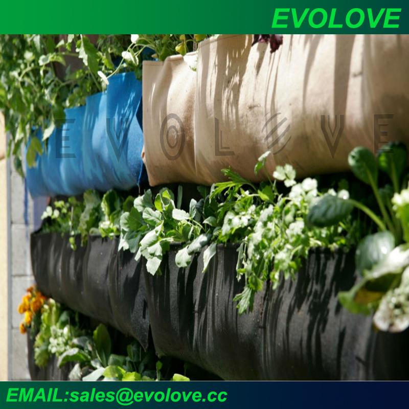Evolove jard n paredes verdes jard n vertical con sistema for Sistema de riego jardin vertical