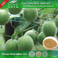 Factory Supply Luo Han Guo Extract Power 80%-95%Mogrosides
