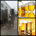 High quality beer fermentation tank 1000L