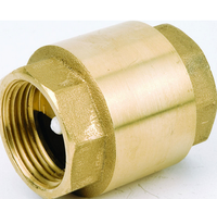 high-quality 2 1/2'' Brass Vertical Check Valve