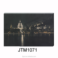 Low Moq Custom Fashion Led Canvas