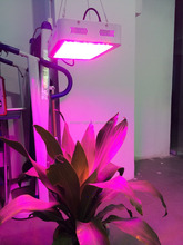 300w indoor plant lamp led grow panel, 3w chip hydroponic led grow light for veg flower seeding